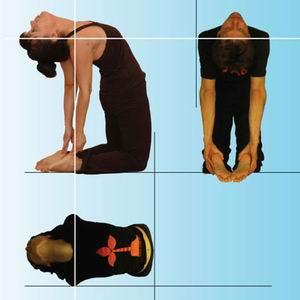 Йога для начинающих занятия